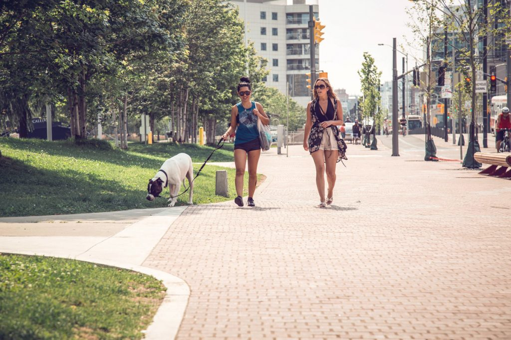 two women walking dog through harbour front park