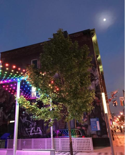 Top Ten Best Toronto Neighbourhoods To Live In 2019