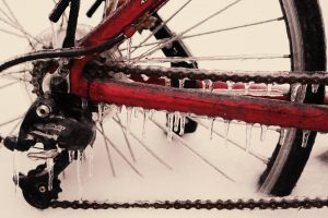 bicycle-699107