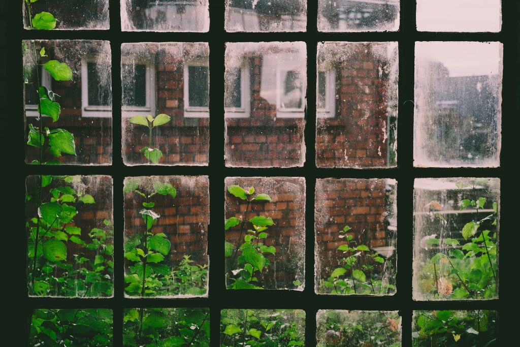 view of opposite apartment through window with green plants on bottom and sides