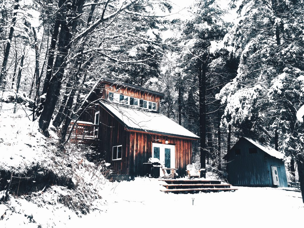 Log cabin in Muskoka forest during winter