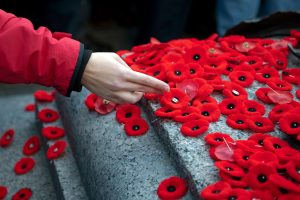 How to get involved with Remembrance Day in Toronto